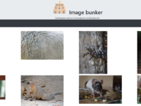 imagebunker.net